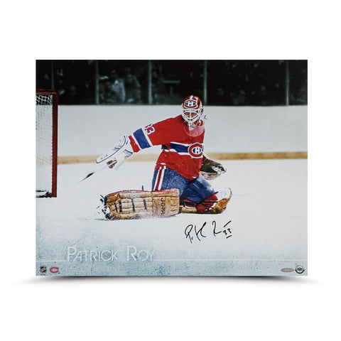 "Patrick Roy Autographed ""The Save"" 20 x 16"
