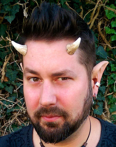 Aradani Resin Glue-on Horns - Small