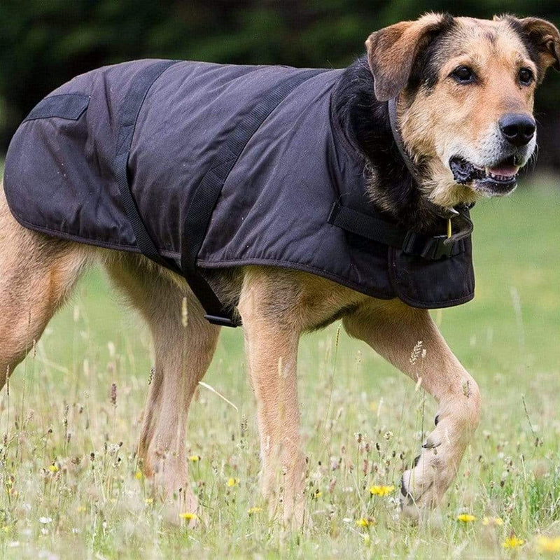 Image of Outback Oilskin Dog Coat