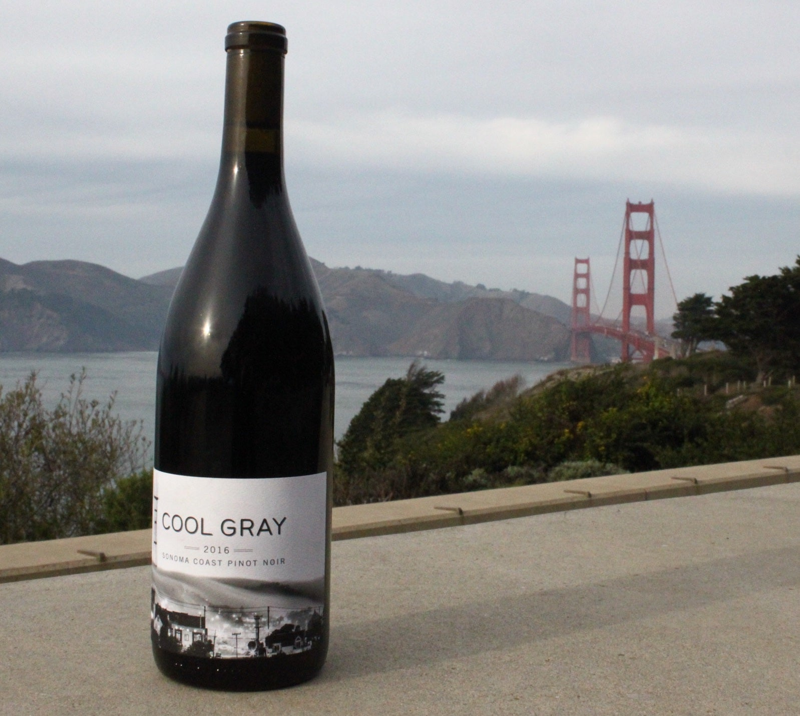 Cool Gray - 2016 Sonoma Coast Pinot Noir