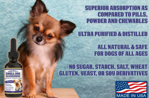 liquid glucosamine for small dogs science