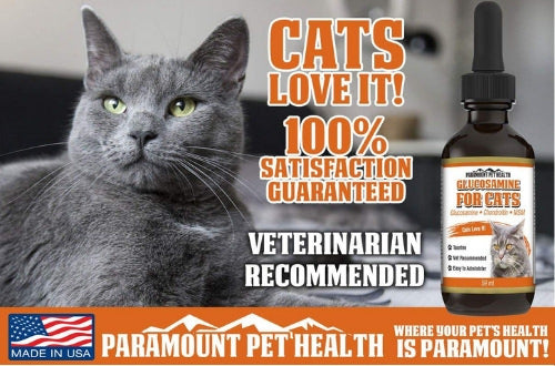 cats love glucosamine for cats