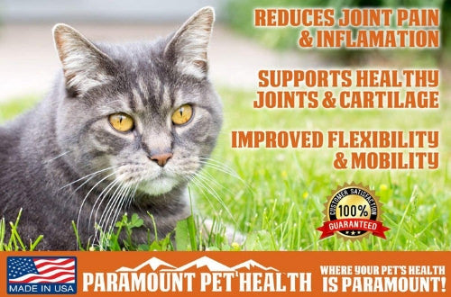 liquid glucosamine for catss reduces joint pain