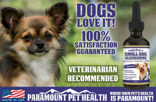 dogs love glucosamine for small dogs