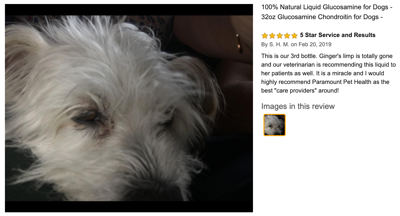 Paramount Pet Health Review from S.H.M.