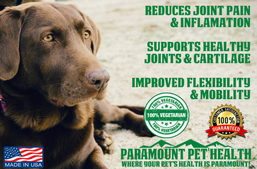 liquid vegetarian glucosamine for dogs reduces joint pain