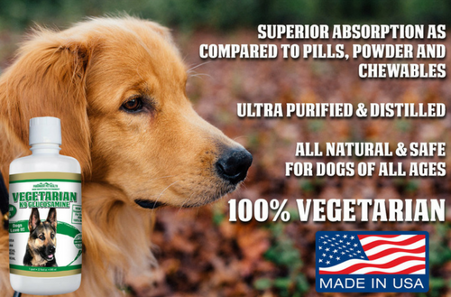 premium liquid vegetarian glucosamine for dogs