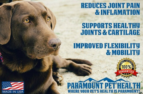 liquid glucosamine for large dogs reduces joint pain