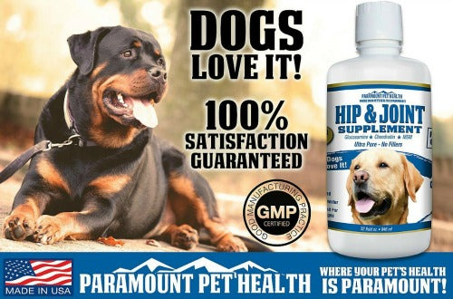 dogs love glucosamine for large dogs