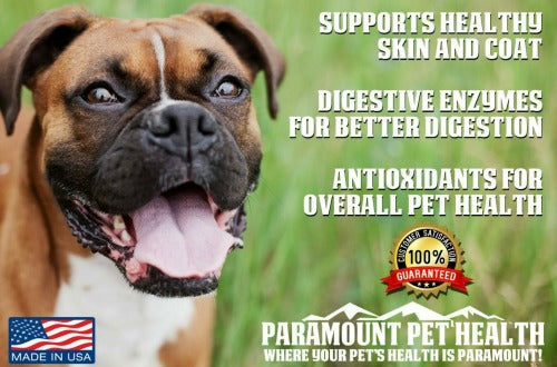 All Natural Liquid Vitamins for Dogs