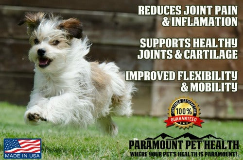 liquid glucosamine for small dogs reduces joint pain