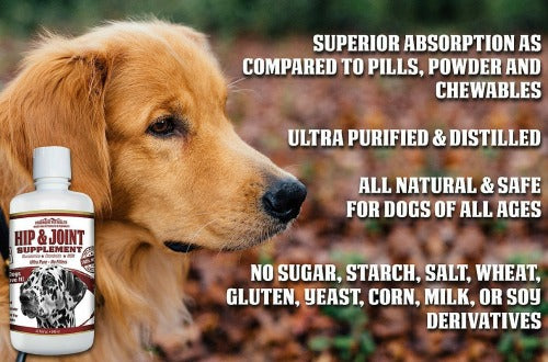 concentrated liquid glucosamine for large dogs