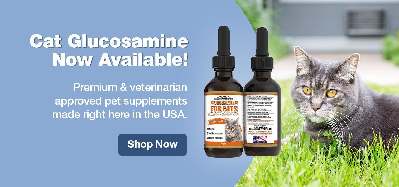 Glucosamine for Cats - Paramount Pet Health