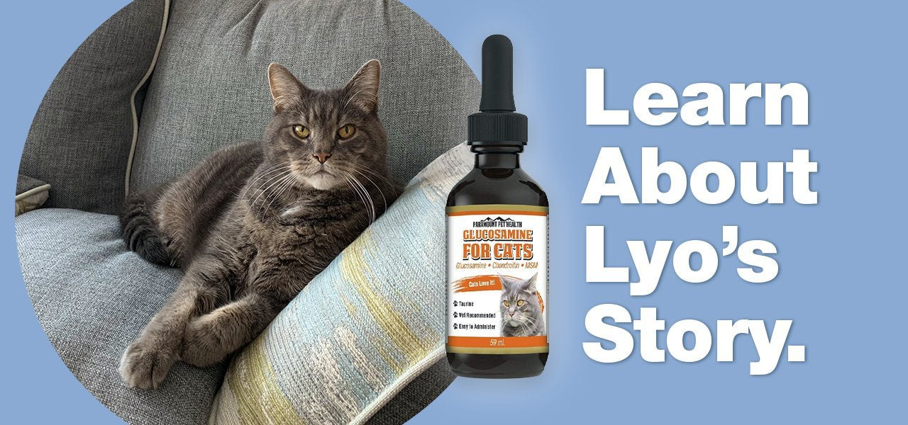 Lyo's Story Glucosamine for Cats