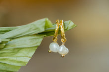 "Load image into Gallery viewer, ""Joie"" Mini Baroque Pearl Earrings, 18K Gold Plated Stainless Steel Mini Hoops"