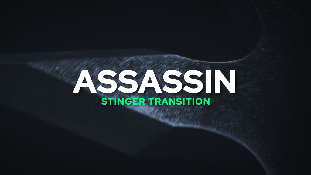 Assassin Stinger Transition Template