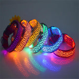 Dog LED Lighted Leopard Print Collar (6 Colors)