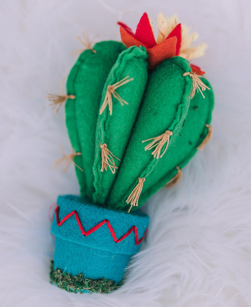 Bulbous Cactus Ornament (3820069)