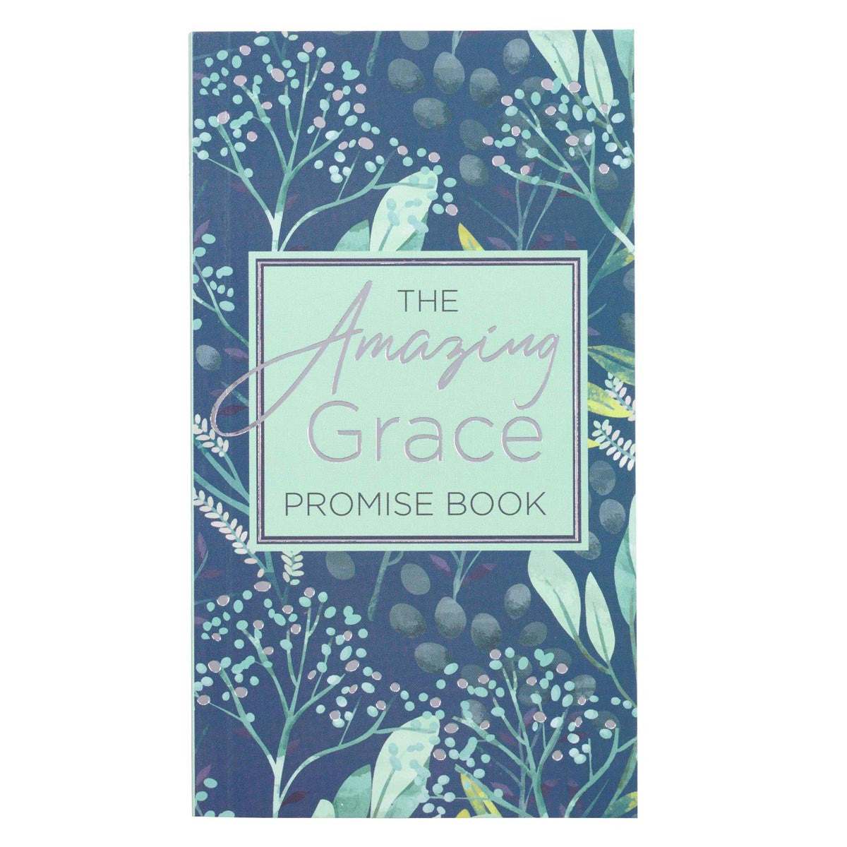 The Amazing Grace Promise Book (GP61)