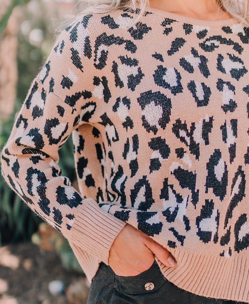 Leopard Print Open Back Sweater (M9039)