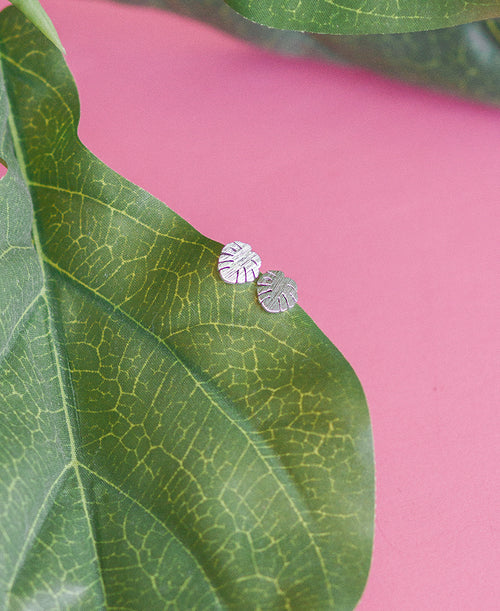 Silver Monstera Leaf Tiny Earrings