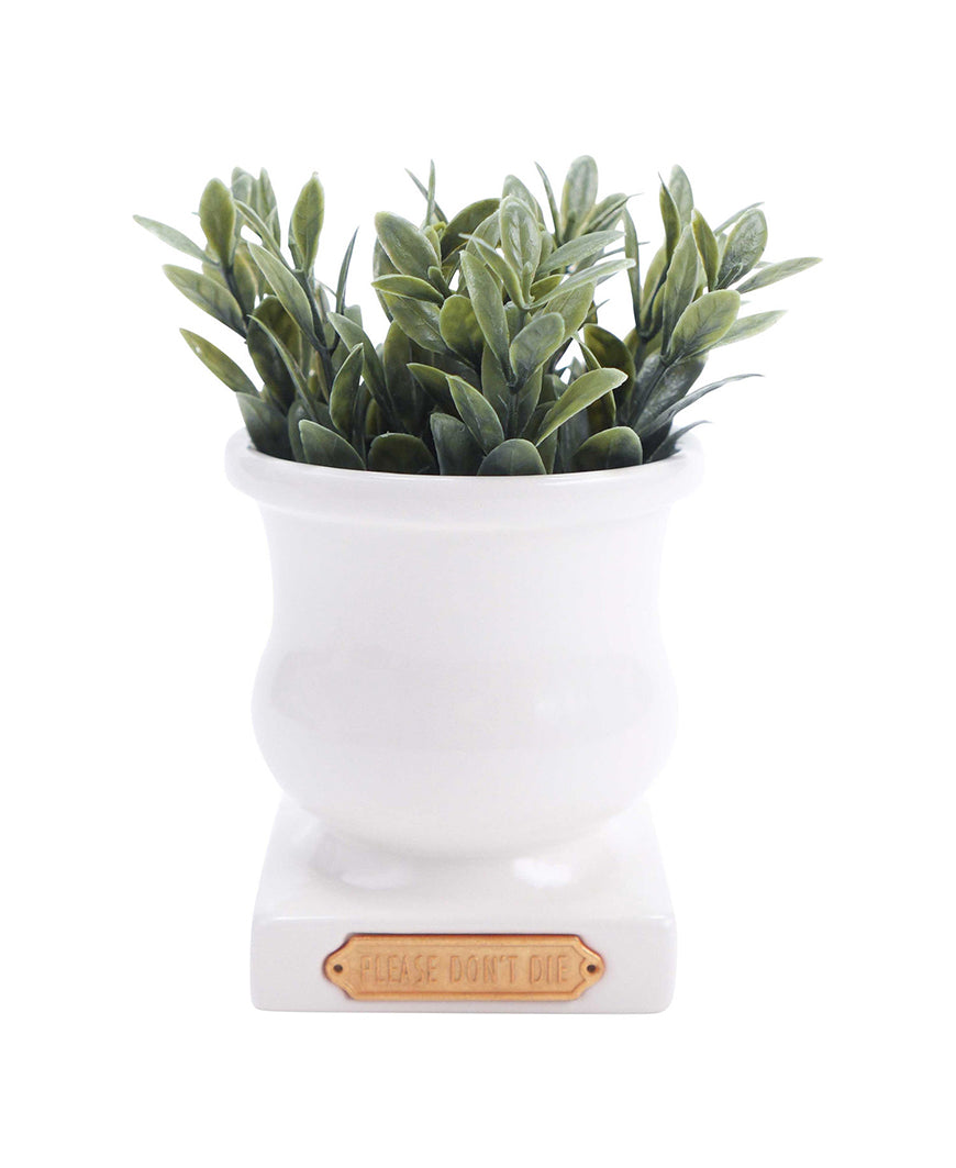Small White Please Don't Die Planter