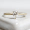 Petal Solitaire Ring (3 Prong)