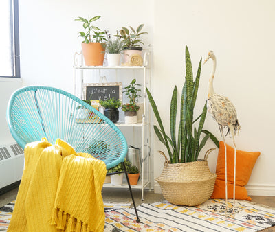 2019 Spring Design Trends: 7 Décor Trends We're Loving