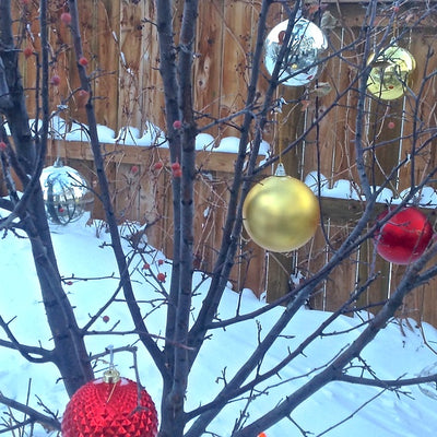 Speedy Holiday Decorating Idea: Outdoor Tree Ornaments