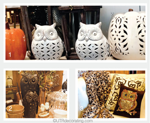 The Owl Trend is Still Strong… Hoo Knew?