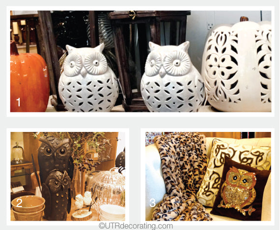 The trend for owl themed knick-knacks is still going strong.