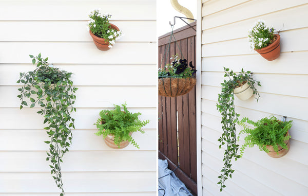 Three plants in pots hanging from siding