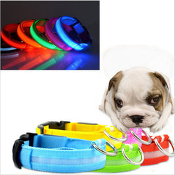 Safety LED Dog Collars