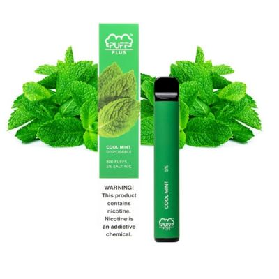 Cool Mint Puff Bar Plus +