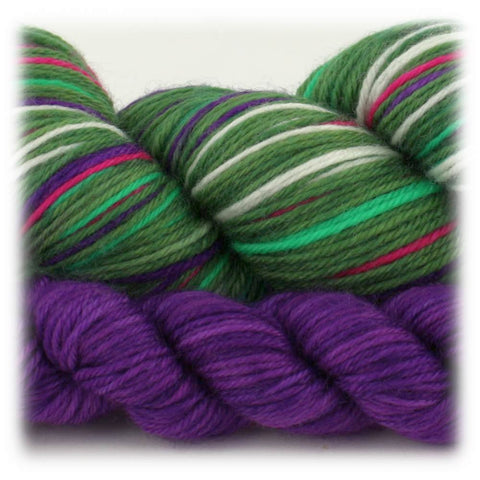 Trochilidae Sock Sets