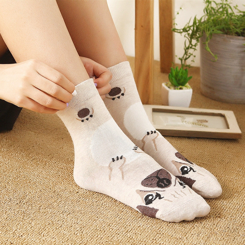 New Dog Socks