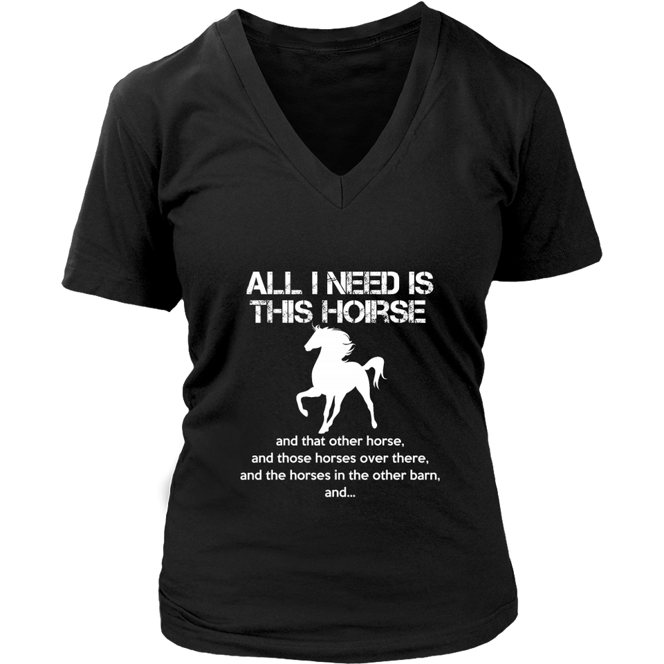 All I Need Is This Horse