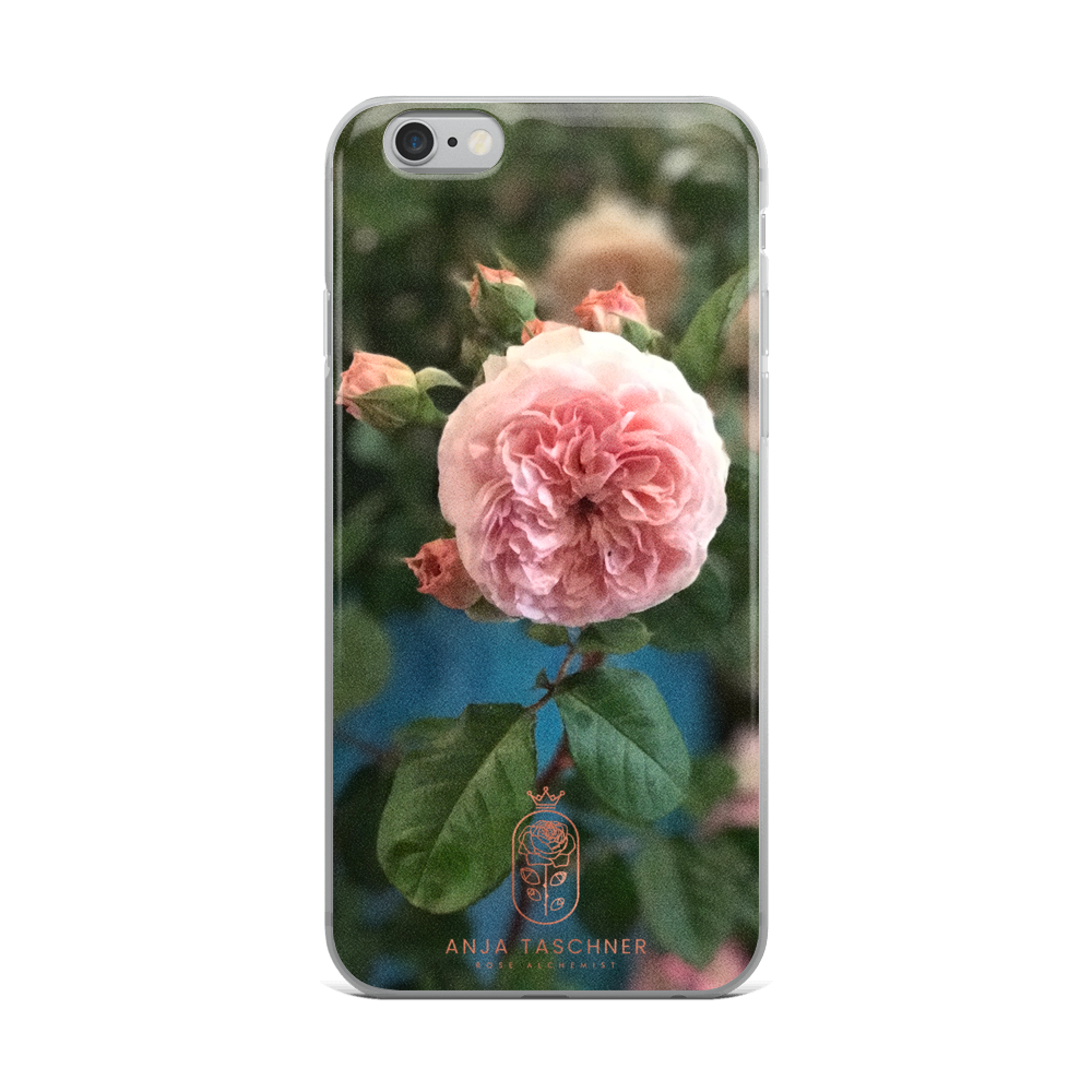 'Leander' iPhone Case