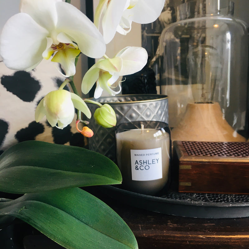 We carefully curate luscious orchids, green leafy trees, candles & body creams with marble, wire & tin tubs and platters to elevate your everyday and accentuate the good food we make.