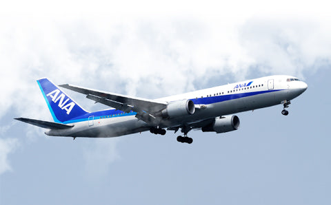 All Nippon Airways 767