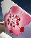 Custom China Airlines Boeing 747-400, Tail #B-18201