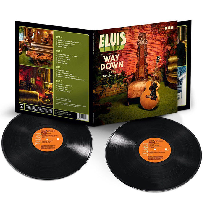 Way Down In The Jungle Room (Vinyl)