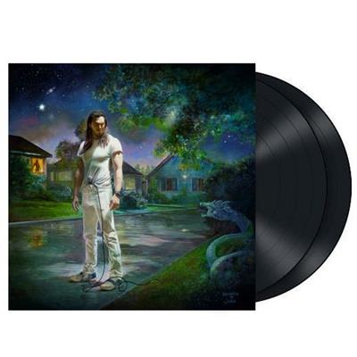 ANDREW W.K. YOU'RE NOT ALONE 2LP VINYL