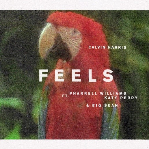 "FEELS (Vinyl) (12"" Picture Disc)"