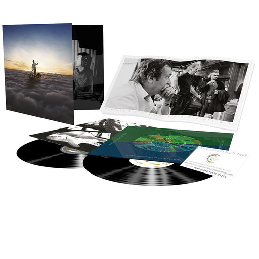 The Endless River (Vinyl) (2LP)