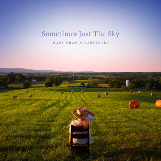 SOMETIMES JUST THE SKY (VINYL) (2LP)