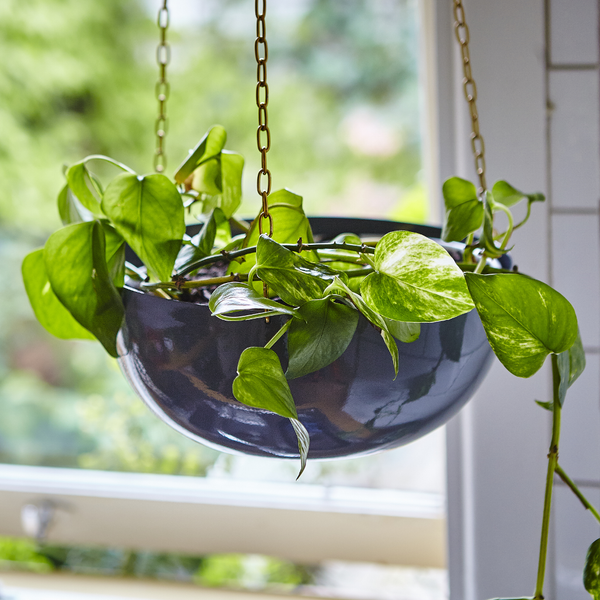 Charcoal grey hanging planter