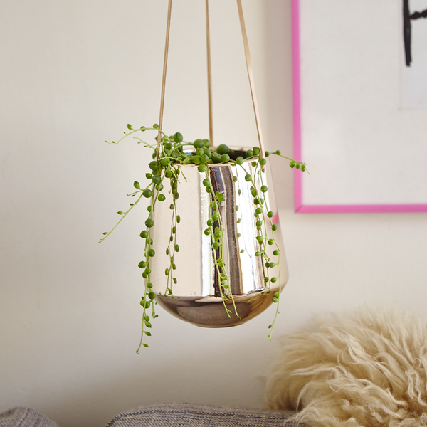 Reggie Copper Hanging Pot
