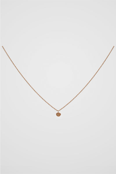 PETITE SHELL NECKLACE