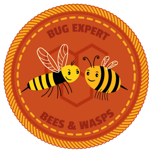Bees and Wasps Badge BookLife